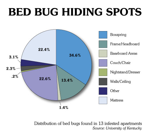 Reddit Bed Bugs Signs New Apartment