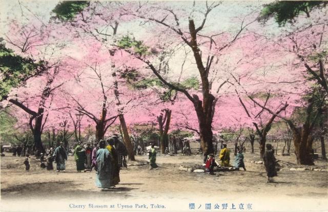 3JapanesePostcard_jpg_CROP_original-original