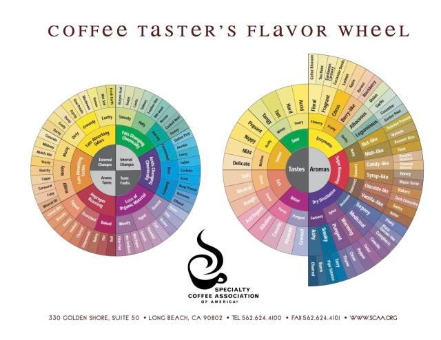 coffee_tasters_flavor_wheel