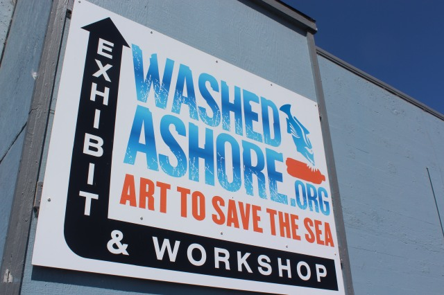 Washed-Ashore